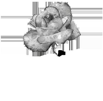 Istituto Italiano del Calcestruzzo